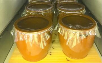 第一発酵工程(大豆)